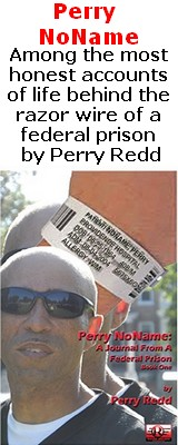 Perry NoName: A Journal From A Federal Prison-book 1