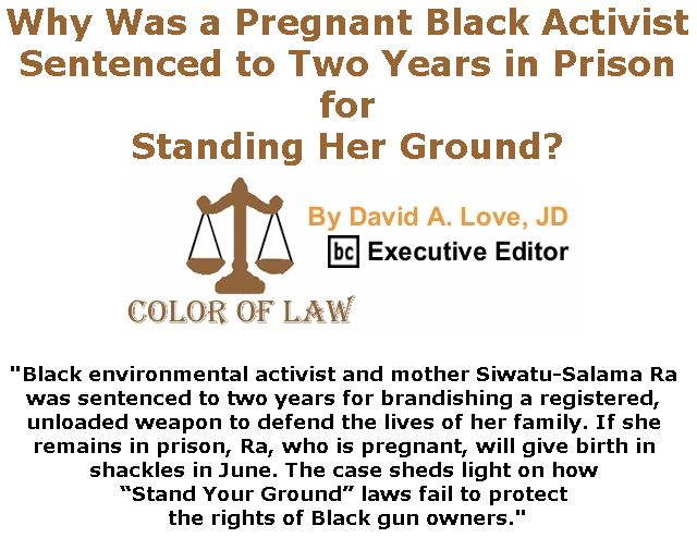 BlackCommentator.com May 24, 2018 - Issue 743: Why Was a Pregnant Black Activist Sentenced to Two Years in Prison for Standing Her Ground? - Color of Law By David A. Love, JD, BC Executive Editor
