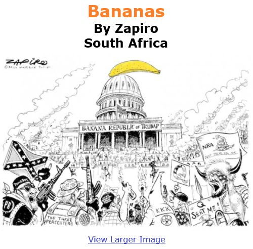 BlackCommentator.com Jan 14, 2021 - Issue 848: Bananas - Political Cartoon By Zapiro, South Africa
